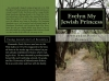 bookcoverpreview-evelyn-my-jewish-princessno-box-af03eacb54904a5e18a537dfb094b7dea560414c
